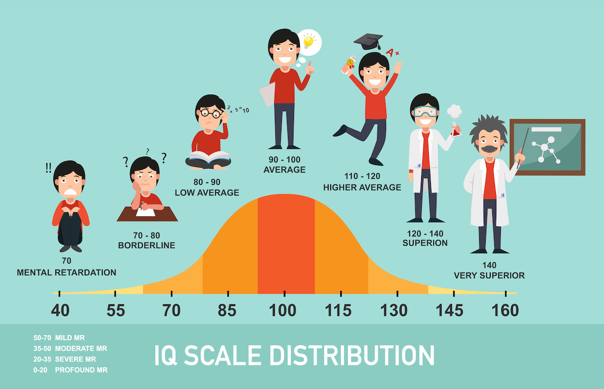 IQ Scale Distribution