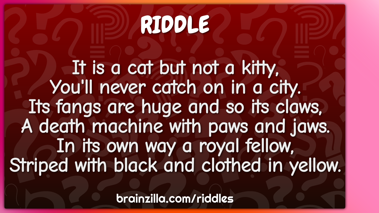 It is a cat but not a kitty,  You'll never catch on in a city.  Its...