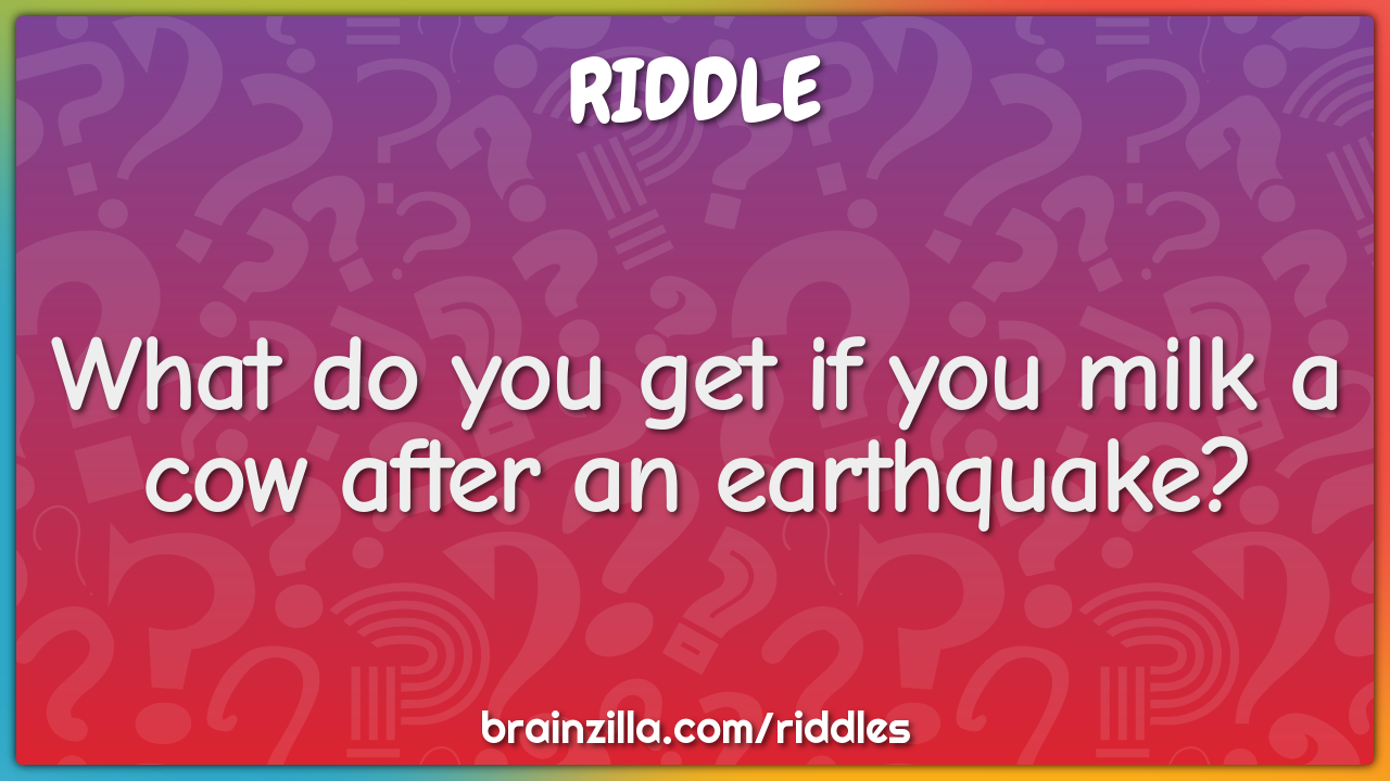 What do you get if you milk a cow after an earthquake?