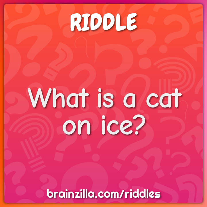 What is a cat on ice?