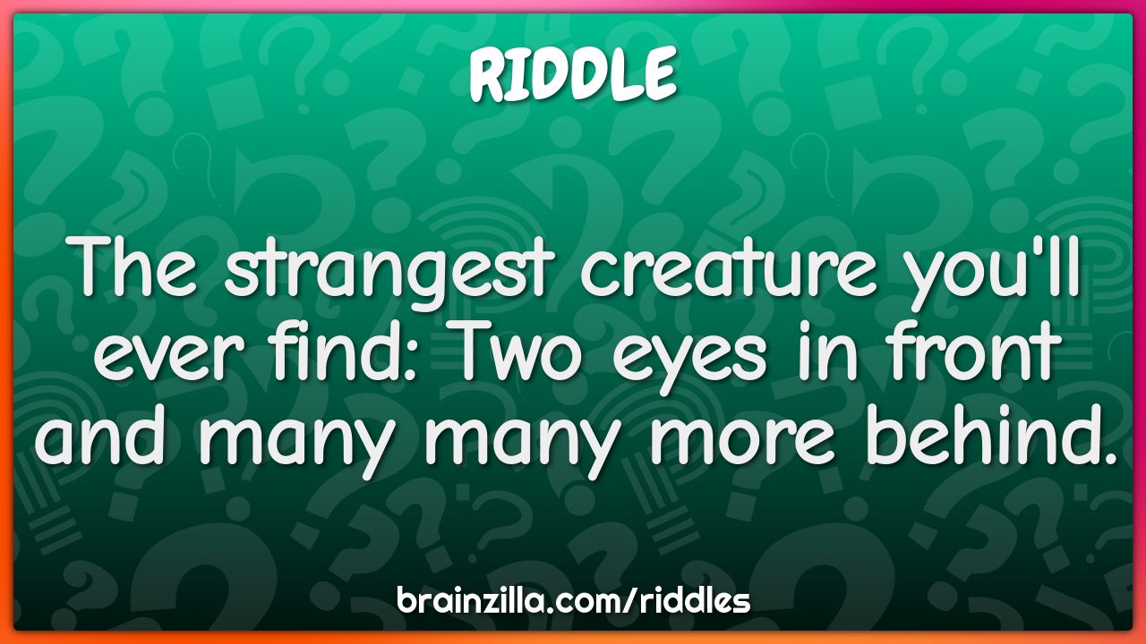 The strangest creature you'll ever find: Two eyes in front and many...