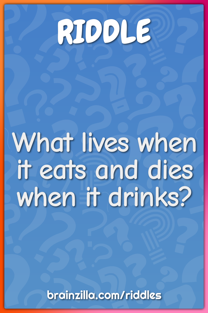 What lives when it eats and dies when it drinks?