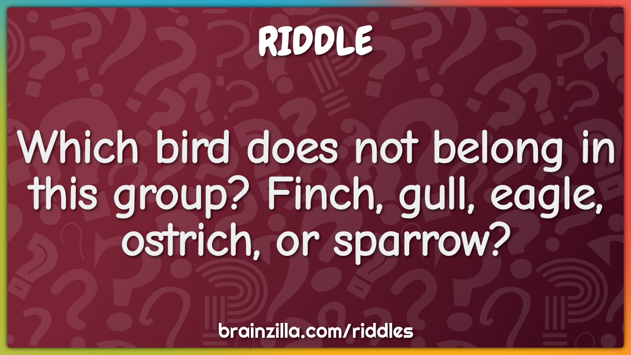 Which bird does not belong in this group? Finch, gull, eagle, ostrich,...