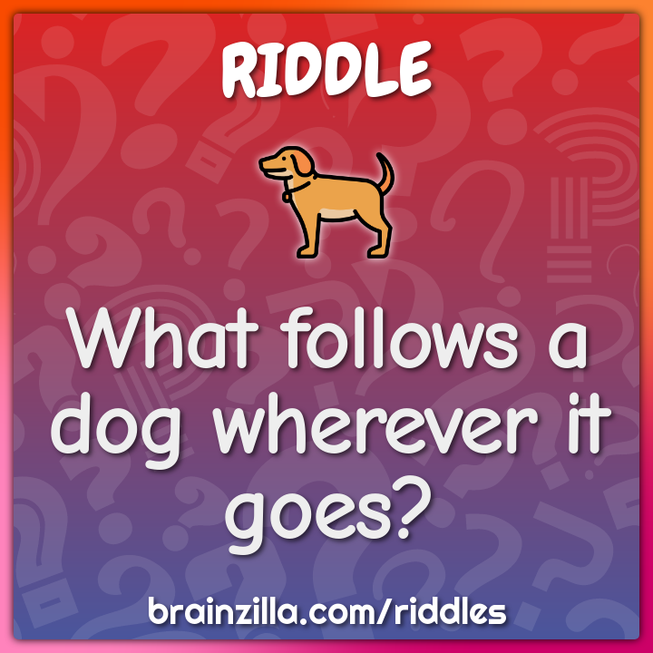 What follows a dog wherever it goes?