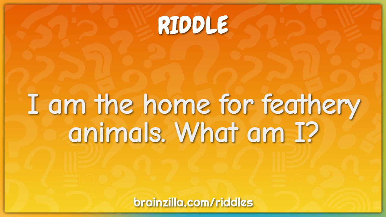 I Am The Home For Feathery Animals What Am I Riddle Answer Brainzilla
