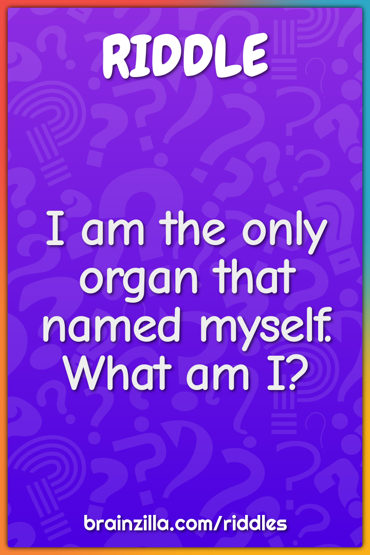 I am the only organ that named myself. What am I?
